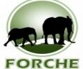 forche-tours-travel